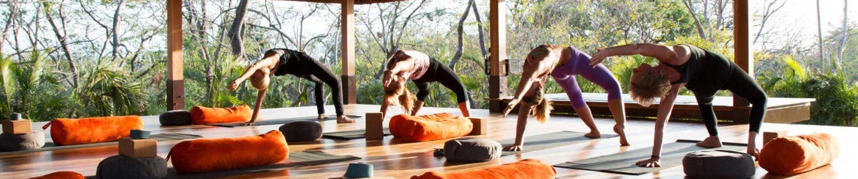 Le Bodhi Yoga Kit - image
